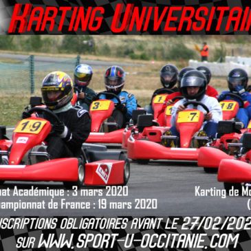 Toulouse : Karting